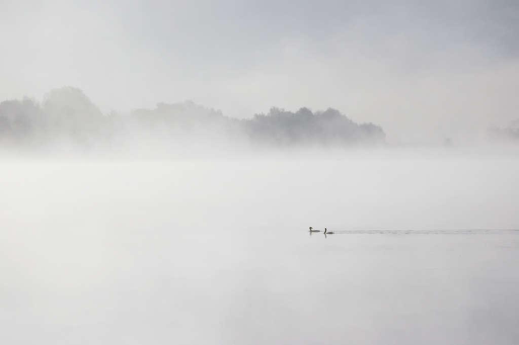 Lake-p.jpg